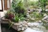 Nước - Yếu tố Thủy trong vườn hoa cây cảnh